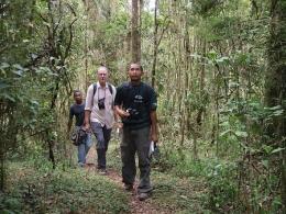 Wanderung durch den Ranomafana Nationalpark