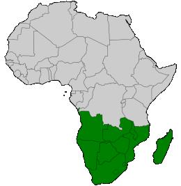 Südliches Afrika