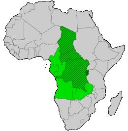 Zentralafrika
