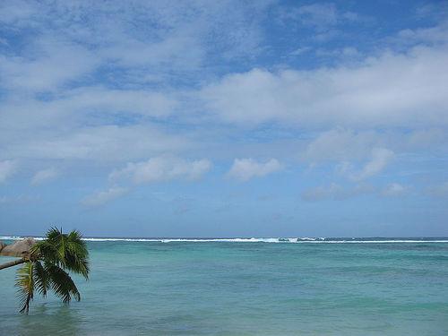 Traumziel in jeder Hinsicht: die Seychellen