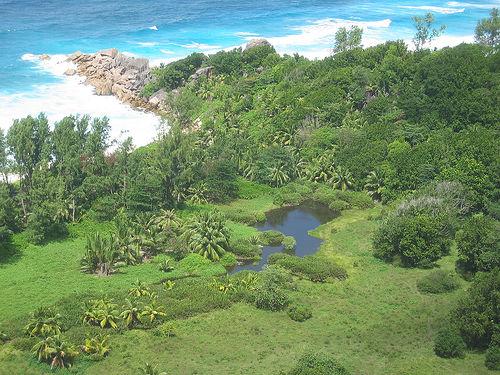 Hat da jemand Seychellen gesagt?