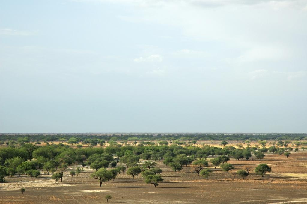 Reiseinformationen für Kamerun