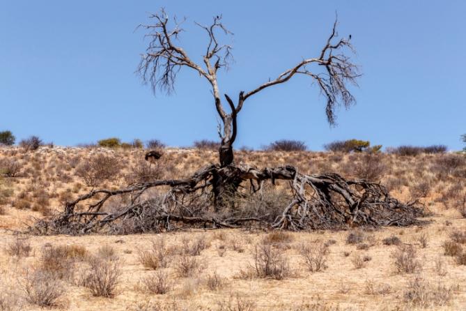 Landschaft - Südafrika - Reisen
