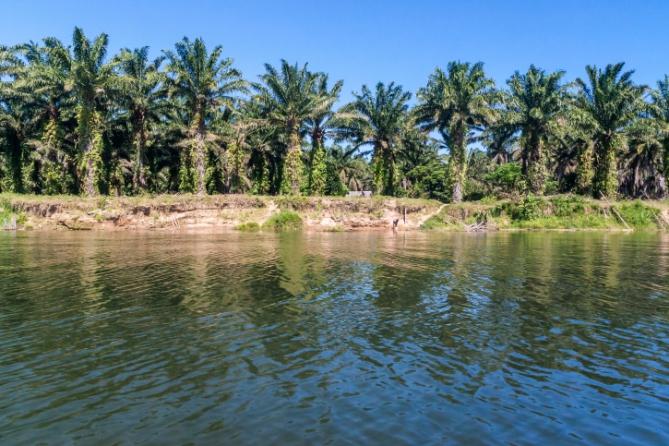 Gambia - Reisen - Landschaft