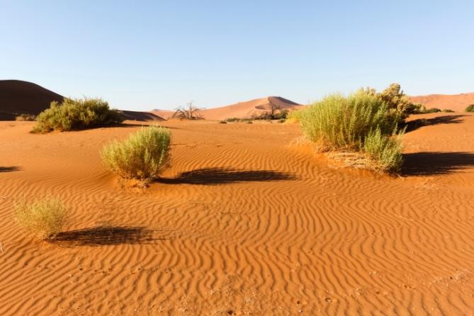 Namibia - Reisen - Mietwagen