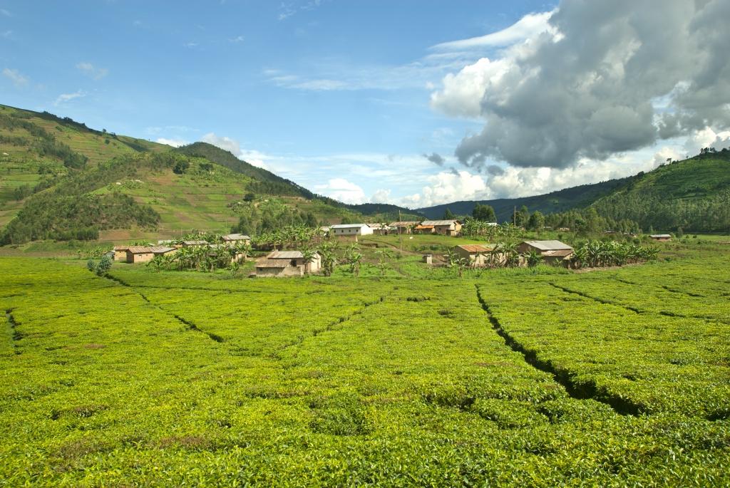 Reiseinformationen Republik Kongo-Reiseziele