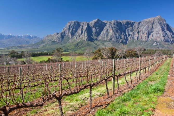 Südafrika - Reisen - Weingebiet
