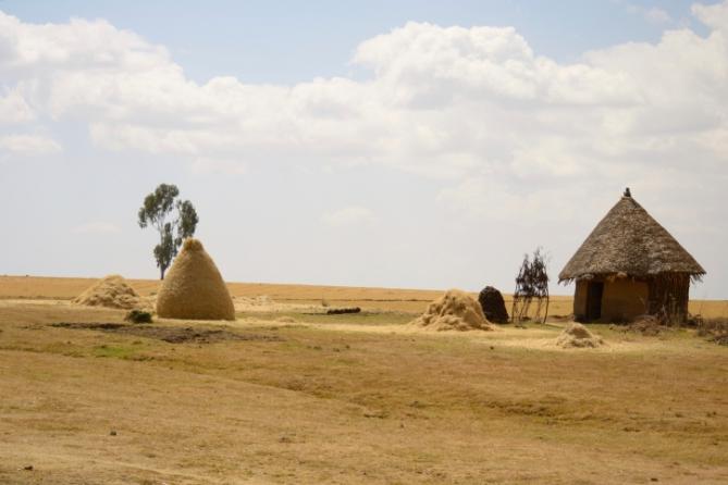 Guinea-Bissau - Reisen - Hütte