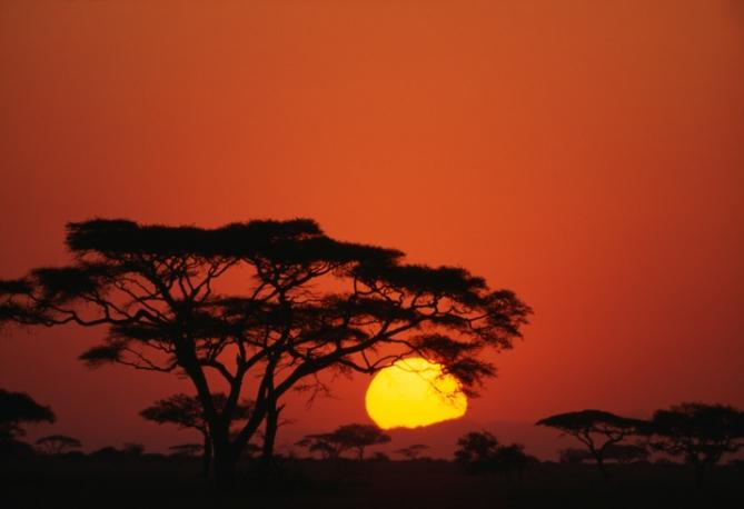 Tansania - Reisen - Nationalpark