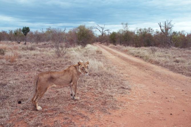 Swasiland - Reisen - Klima