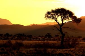 Namibia Safaris: Landschaft