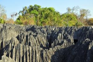 Mit natuerlich-afrika.reisen im Tsingy de Bemaraha Nationalpark-Madagaskar