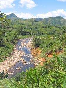 Madagskar erleben mit natuerlich-afrika.reisen