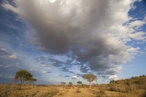 Mit natuerlich-afrika.reisen-Kenia Reisen zum Tsavo Ost NMationalpark