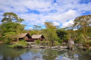 Afrika Reisen mit natuerlich-afrika.reisen