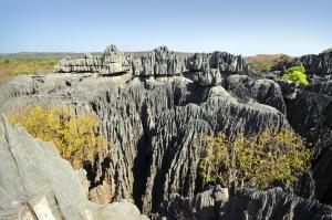 Tsingy de Bemaraha-Nationalpark-Madagaskar