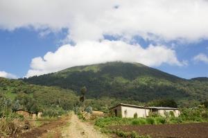 mit natuerlich-afrika.reisen- Ruanda Gruppenreisen- Volcanoes Nationalpark-Ruanda