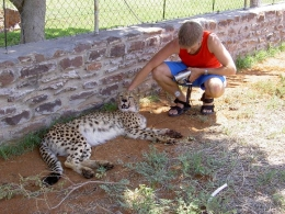 Namibia - Reisebericht - Leopard
