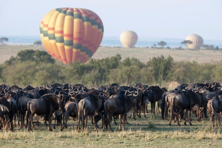 Eine Ballon-Safari zur Great Migration