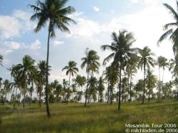 Mosambik - Südafrika - Reisen